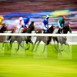 Horses racing at Ascot. Did you know Humans can run round the Ascot track too?